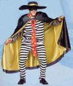 Hamburgler costume